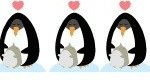 3 Penguin